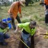 Aboriginal Subsurface testing